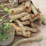 Hướng dẫn làm món cá kho làng Đại Hoàng Hà Nam ngon tuyệt cú mèo